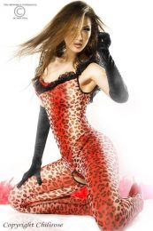 Chilirose Catsuit Red Panther CR-3334