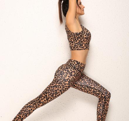 Sporty Set Bra and Legging Leopard MY YN910265